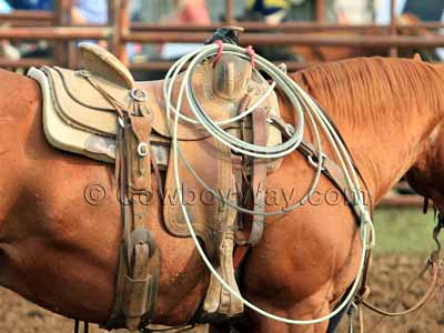 A great quality, cheap roping saddle