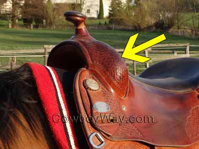 A trail riding saddle with an arrow pointing to the fork