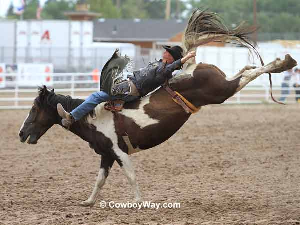 Cheyenne Frontier Days Photos