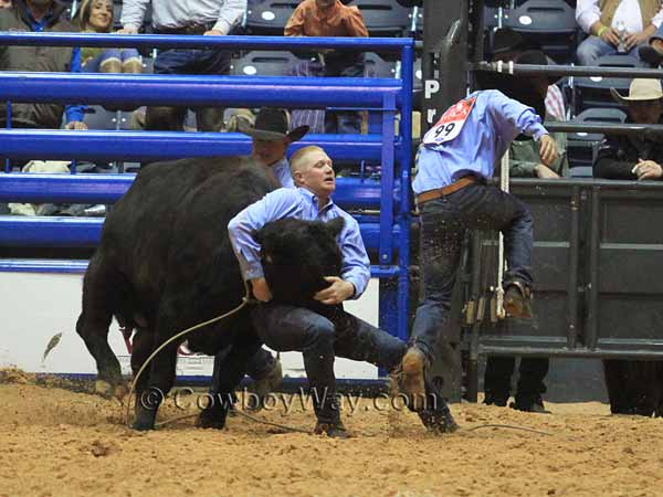 Land For Sale Amarillo Tx >> Ranch Rodeo Wild Cow Milking Photos